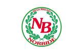 norbide-160×100